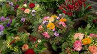 bloemen_boeketten