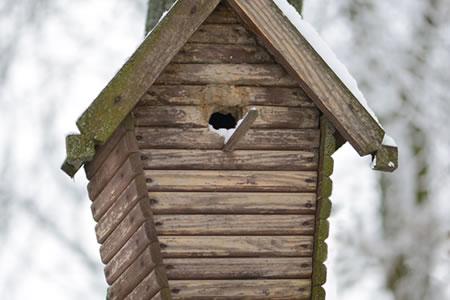 vogelhuisjes_schoonmaken_2 - kopie