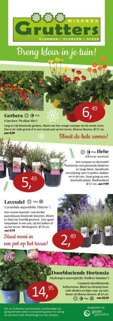 Aanbieding planten Tuincentrum Miranda Grutters