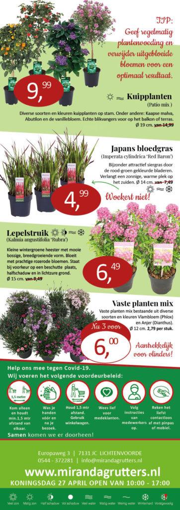 Aanbieding planten Tuincenrum Miranda Grutters