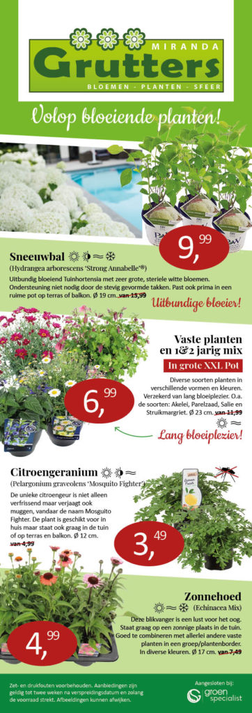 Tuinplanten aanbieding